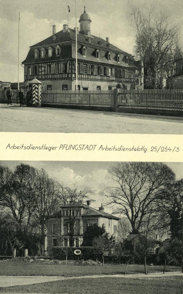 K800_254-3-001-Pfungstadt